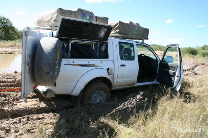 Our friends stuck in the mud, Namibia, 2011