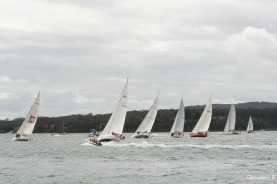Start of the Three Peaks Race, Tamar River, Beauty Point