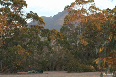 Bush camping at Mount Trio on our previous (dry) visit with the swags in the foreground