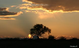 Kalahari sunset