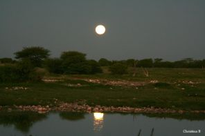 Die volmaan sak oor die watergat by Okaukuejo, Etosha, Namibië