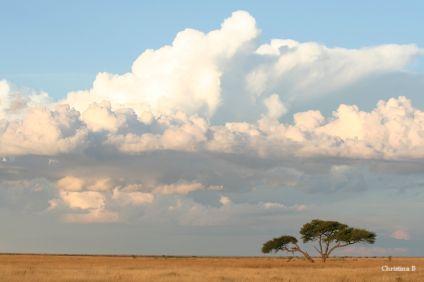 Etosha thunderstorm about to happen