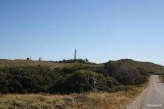 One of the seemingly innocuous little hills (towards Wadjemup lighthouse which was an important military spot in WW2)