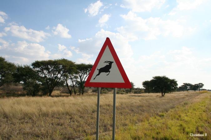 Koedoe waarskuwingsbordjie in Namibië
