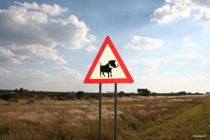 Vlakvark waarskuwingsbordjie in Namibië