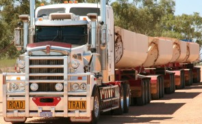 Road train, a common sight on outback Australian roads. Taken at Minilya roadhouse, about 100km from Coral Bay in northwestern Australia.