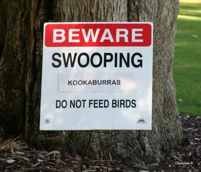 Kings Park & Botanic Garden, Perth, Australia.