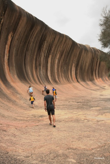 Wave Rock, 14 metre high and about 110 metre long granite rock southeast of Perth, Western Australia
