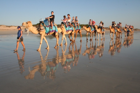 Camel rides on Cable Beach in Broome, WA
