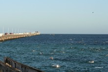 View towards the end section of the Busselton jetty during the swim leg of Ironman WA
