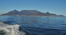 Table Mountain with Devil's Peak to the left and Lion's Head to the right
