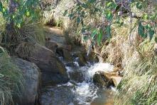 The top of Lesmurdie Falls