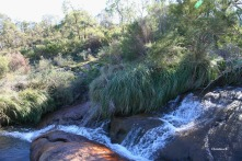Cascades above the Lesmurdie Falls