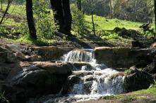 Cascades above the Lesmurdie Falls